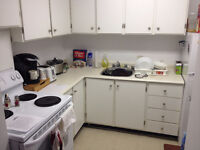 1 bedroom apartment available for September 1st!