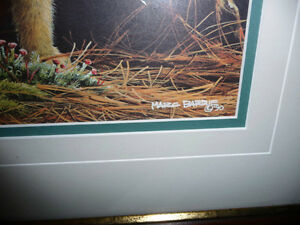 "Marc Barrie ""New World-Lynx Kitten"" Limited Edition, Signed and Stratford Kitchener Area image 5"