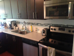 Room for rent across from UWaterloo! High quality apartment.