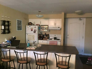 Tobin St. Studio Apartment - available July 1st