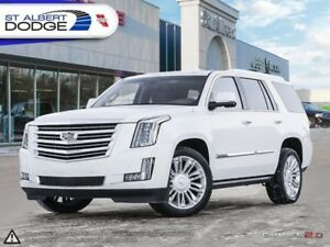 2015 Cadillac Escalade Platinum  WINTER & ALL SEASON TIRES| NAV