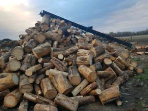 Jackpine firewood