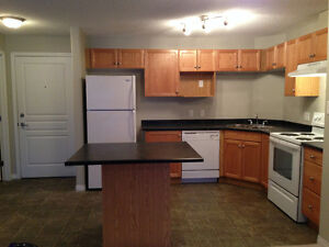 Well Maintained 2 Bedroom 2 Bathroom Condo w/ 2 Parking Stalls