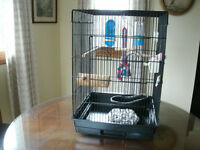 Large Sturdy Black Cage & Accessories