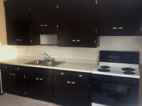 2 Bedroom Renovated Suite for Rent - 1012 39 Ave NW - $1195.00