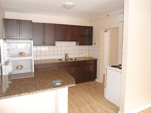 Renovated Suite with patio, minutes away from Broadway/Downtown!