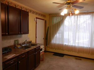 One bedroom apartment with kitchenette