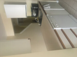 Roommate Wanted college st. close to Dal