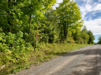 Prime Recreational Land near Tweed, ON - 0 French Settlement Rd