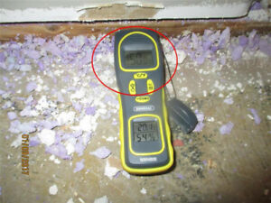 Mold / Lead and Asbestos Inspections and Sampling