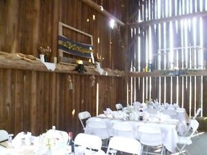 A Different Kind of Wedding! Peterborough Peterborough Area image 3