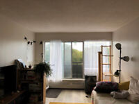 [OCT, NOV, DEC FREE!!!] 1350 mth / Lafontain Park (AWESOME VIEW)
