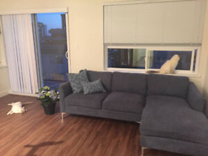 Moe's sectional sofa for sale
