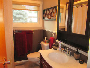 Tons of living space, here's a property for any growing family Regina Regina Area image 10