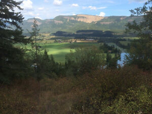 Gorgeous view on over 5 acres near Enderby!
