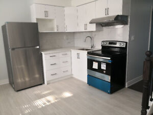 Newly renovated 4 bedroom apartment in Little Italy