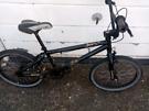 X rated bmx bike, 20 inch wheels, cheap bike