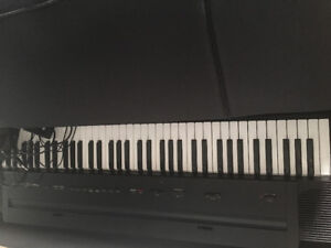Roland digital piano for beginners