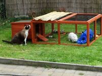 Guinea Pig/Rabbit Run * Free Delivery*