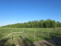 Minutes from Bonnyville! (Lot 2) Hwy 660 & Rge Rd 480