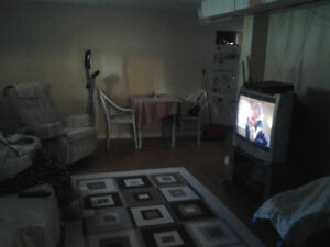 1+ bedroom apartment for rent