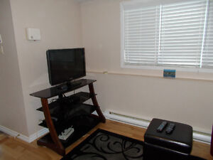 fully furnished and equipped one bedroom above ground apartment St. John's Newfoundland image 5