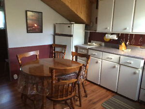 Millertown Cabin For Sale