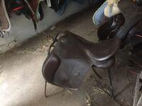 "17"" leather Optimus gp saddle"