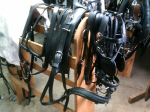 HAFLINGER/Lt HORSE BIO HARNESS