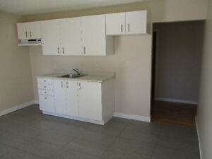 Fully Renovated 1 bedroom apartment - Available now