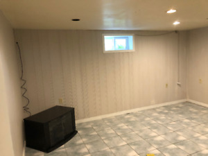 Small bachelor basement apartment in Newmarket