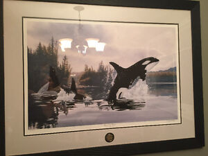 Ducks Unlimited Spirit of the Whale picture