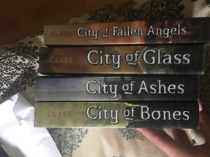 City of Bones series by Cassandra Clare!!