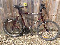 Raleigh Mens bike (need gone ASAP!)