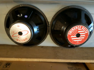 "Eminence Delta 15"" woofers."