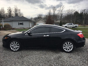2010 Honda Accord EX-L V6 coupe Coupe (2 door)