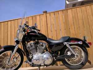 Harley Sportster 2005 Sport Touring -883 Low                 - 3
