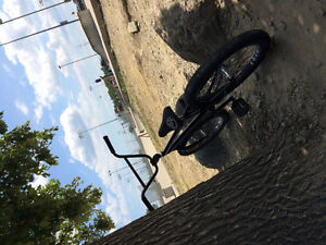 Fully custom bmx for sale