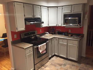 Solid Wood Kitchen cabinets and counter top $2300 OBO