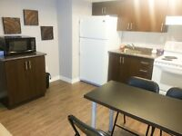Furnished Basement for Indian Professionals & Couples