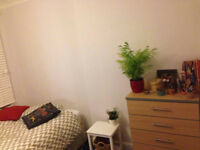 Spacious sunny room close to Finsbury Park