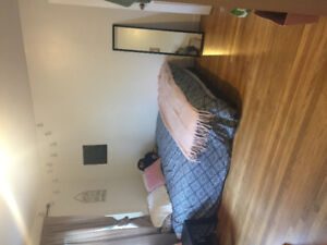 Large Room for Rent in 2 Bedroom Apartment