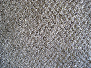 Quality Carpet For Sale