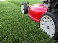 A&Z Grass Cutting