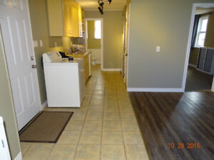 Excellent 1 Bedroom Apt, Central Welland, Available Jan 1, 2019