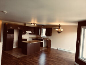 Beautiful open concept condo in center of st Jerome is for sale