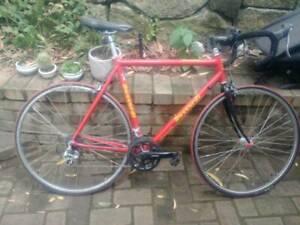 road bike / commuter - size large (56cm)