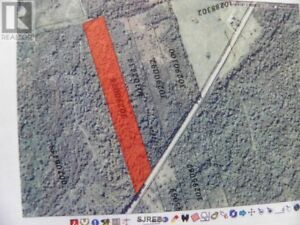 8.52 Acre lot with driveway in, by lake in Ratters Corner, N.B.