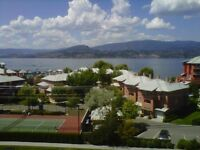 Last min Top floor lakeview suite in resort/with pool available