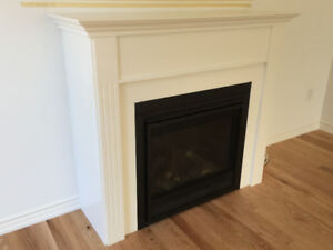 Brand New Hearth & Home Gas Fireplace